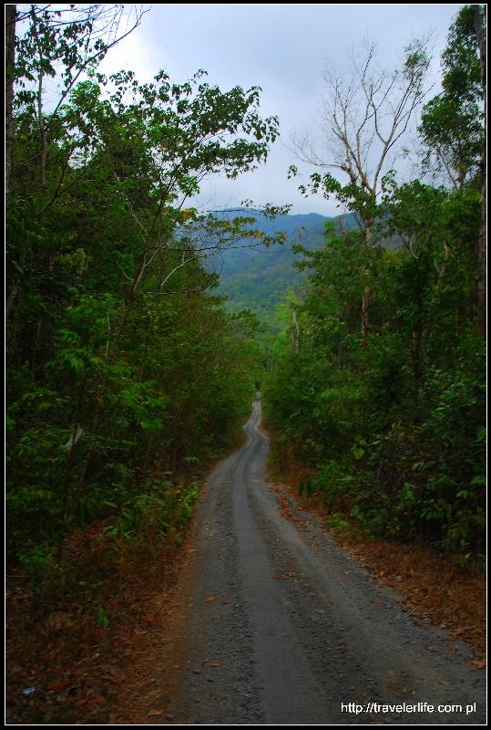 Wyspa jest świetnie przystosowana na wycieczki rowerowe, trekking albo po prostu szaleństwo na skuterze.